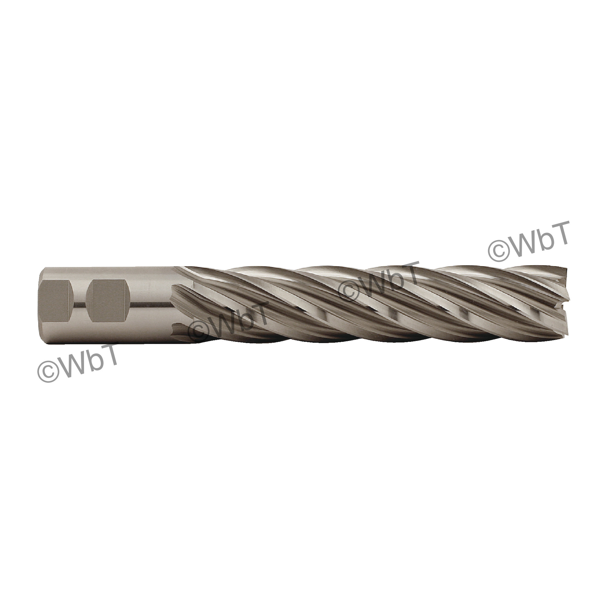 1-1/4 Multi Flute Non Center Cutting X-Long End Mill