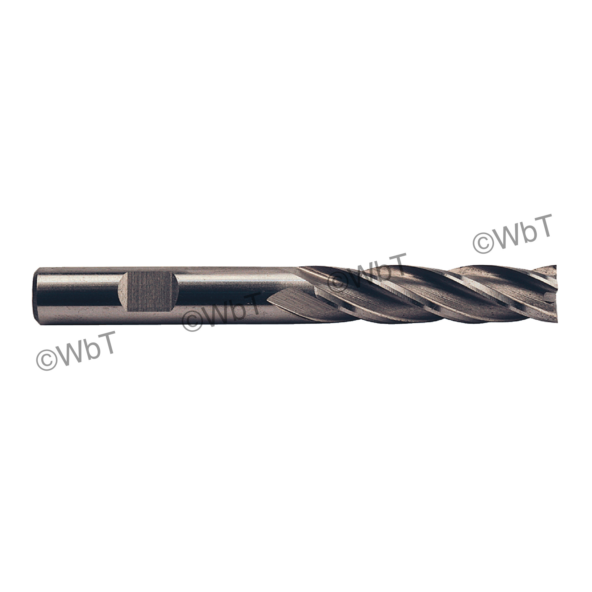 """1"""" Multi Flute Center Cutting Long High Speed Steel End Mill"""