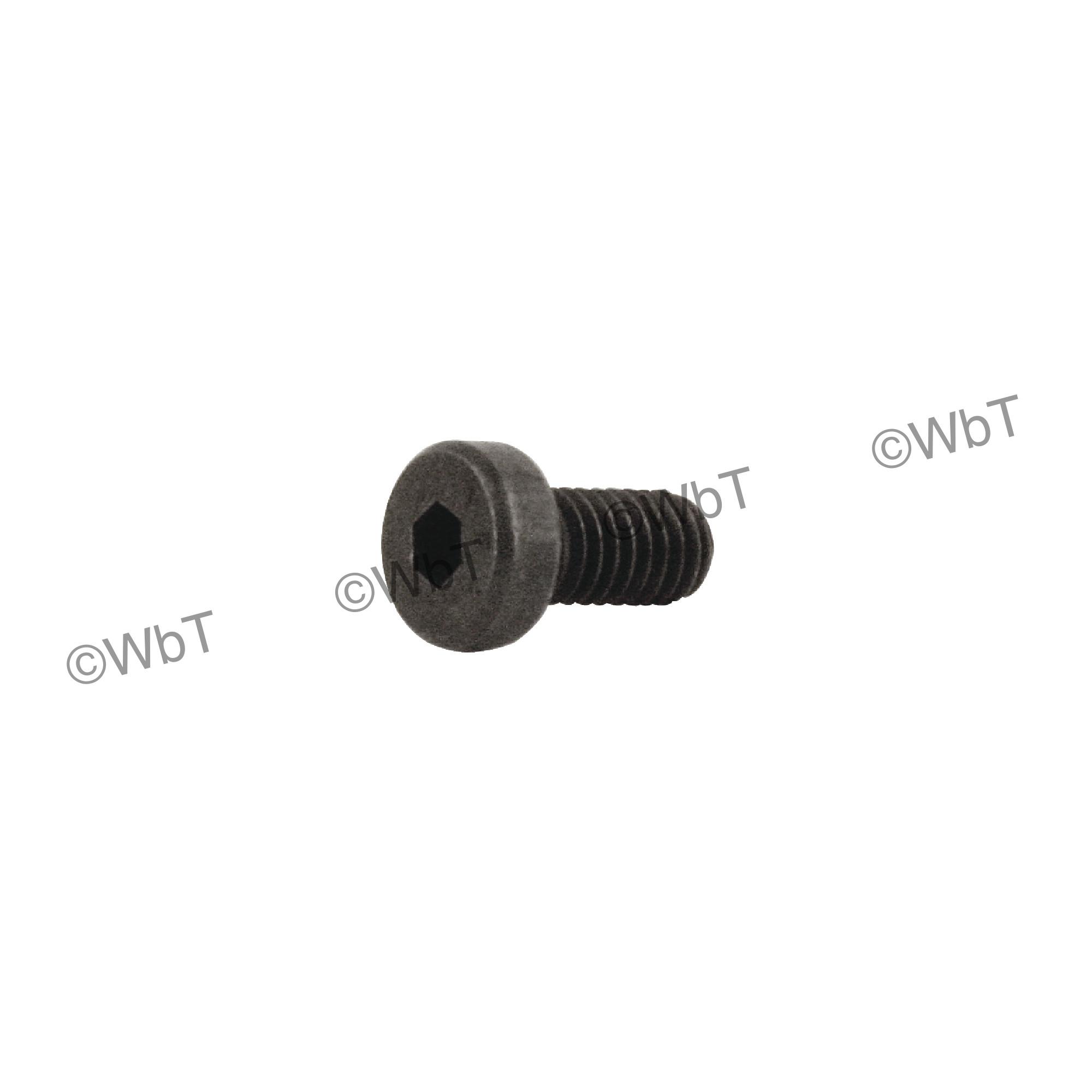ISCAR - SR M4X8 DIN 7984 Socket Head Screw