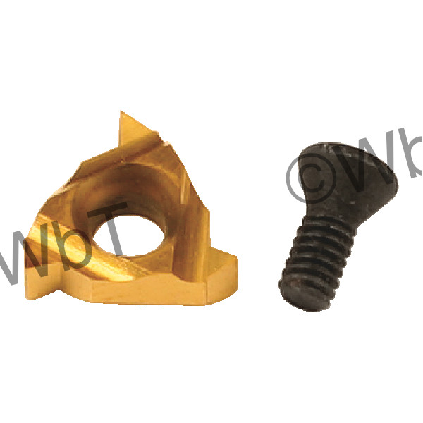 CARMEX - 06 IR A60 T20 / Indexable Threading Insert / A60 Pitch / 20-48 TPI / Internal / Right Hand