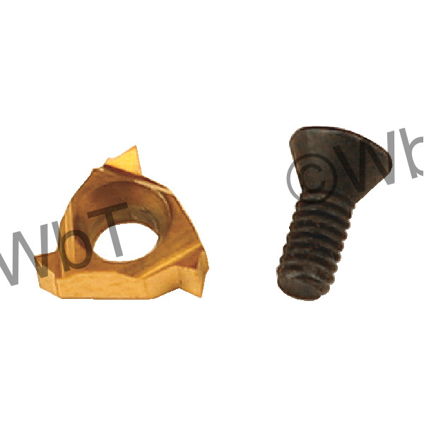 CARMEX - 06 IL A60 T20 / Indexable Threading Insert / A60 Pitch / 20-48 TPI / Internal / Left Hand
