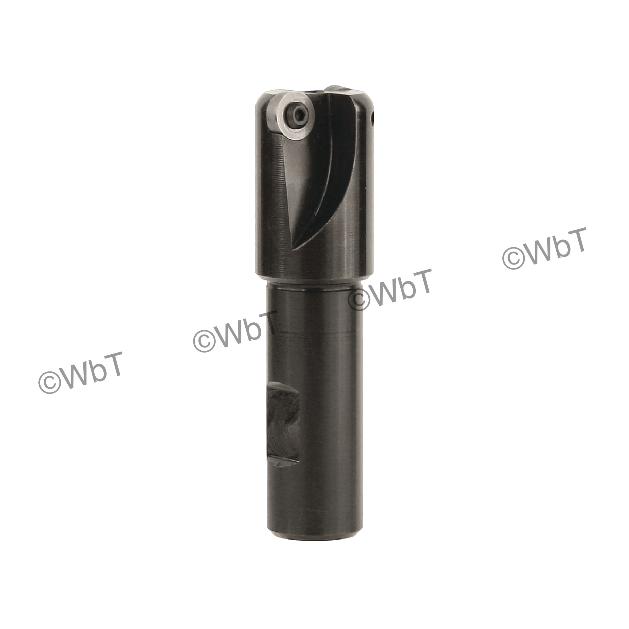 """ROUSE - H134-32 - Endmill / 1.000"""" Cutting Diameter / Weldon Shank / Little Hogger Series"""