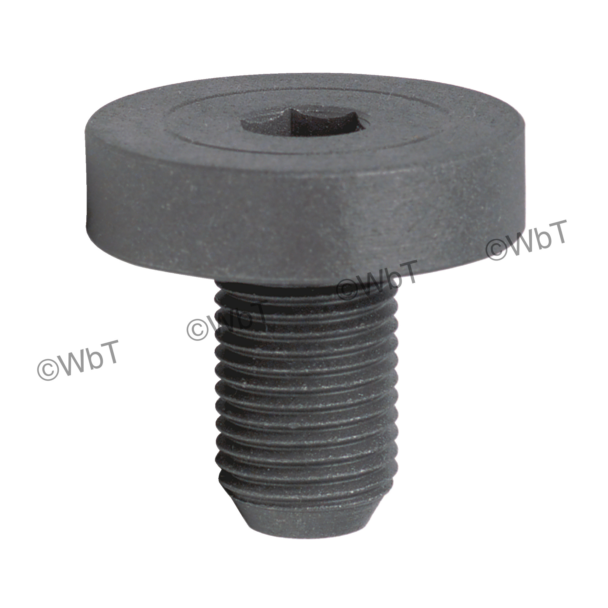 Shell End Mill Arbor Screw