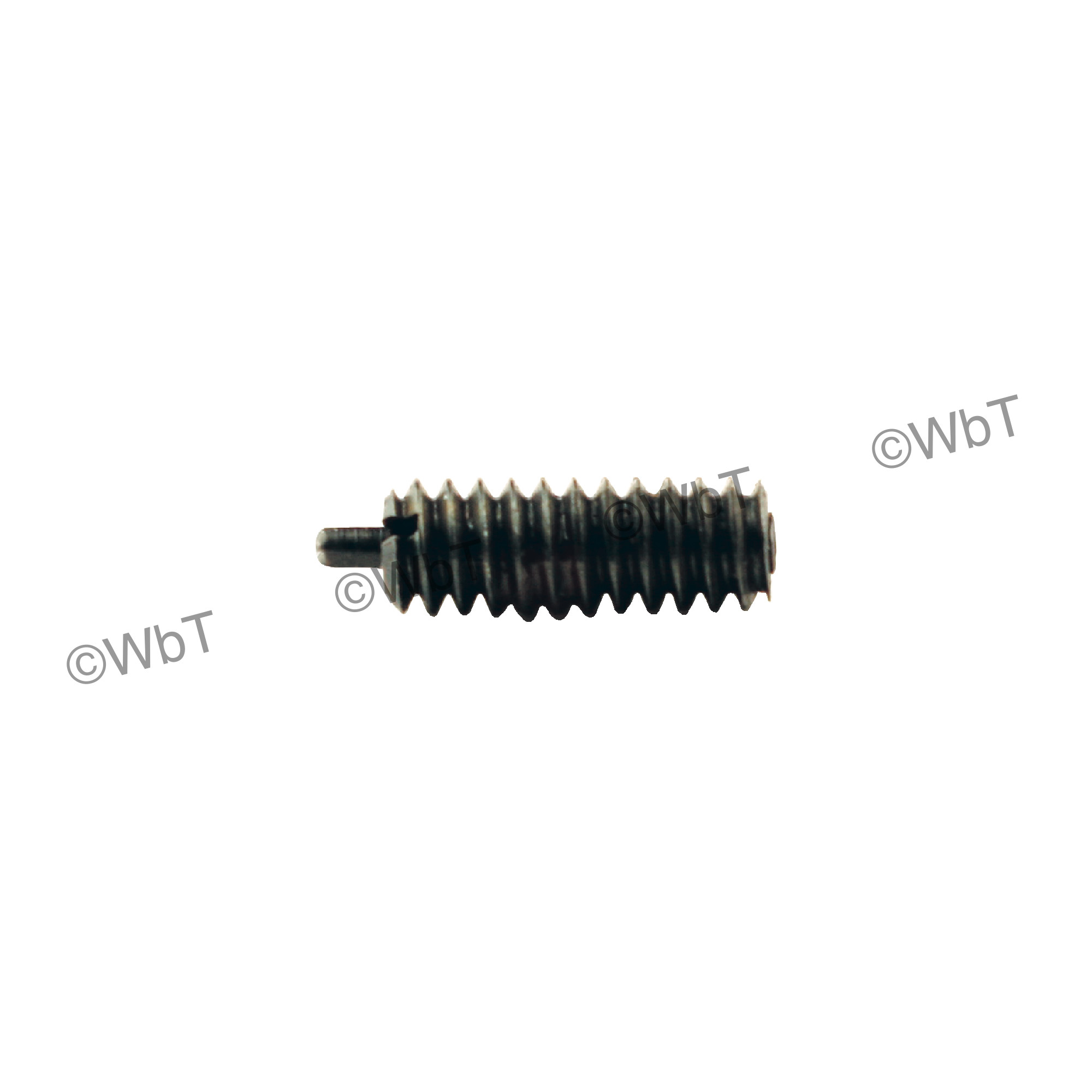 Threaded Spring Plunger With Nylon Patch