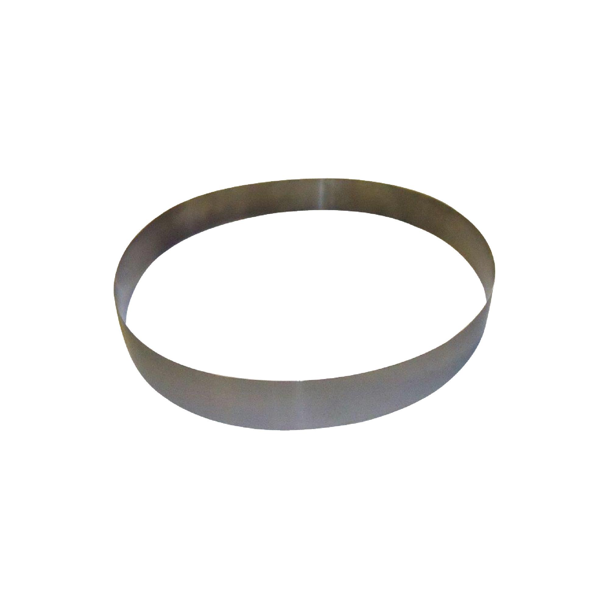"""18"""" Stainless Steel Belt For Mini-Skimmer"""